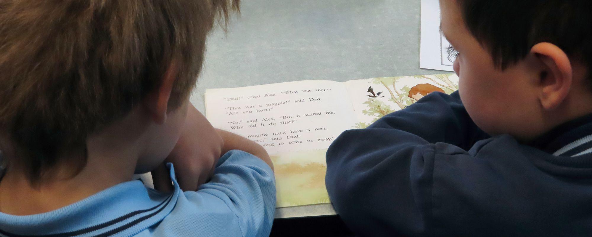 Strathaird Primary School - Strathaird Primary School